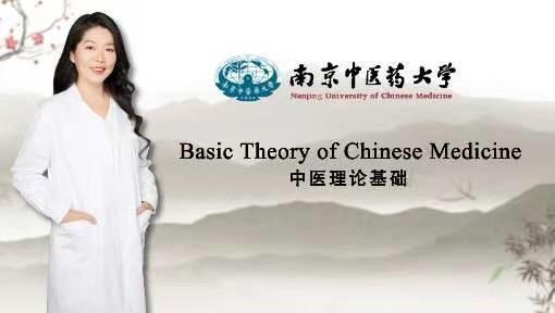 Basic theory of Chinese Medicine